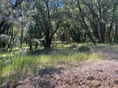 16524 ANNIE DR, Grass Valley, CA 95949 - Photo 2