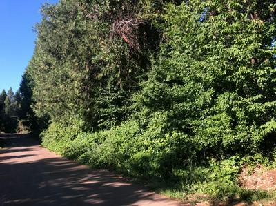 15323 CLEVELAND AVE, Camptonville, CA 95922 - Photo 2