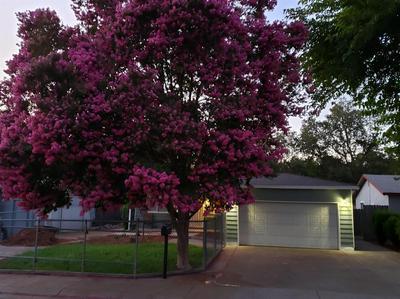 2105 CATSKILL WAY, Sacramento, CA 95838 - Photo 2