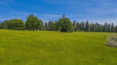 0 HALE ROAD, Volcano, CA 95689 - Photo 2