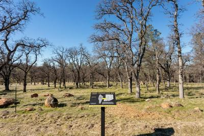 0 HAMMONTON BLUFF PARCEL 2, Smartsville, CA 95977 - Photo 1