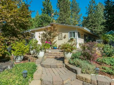 4201 PARK WOODS DR, Pollock Pines, CA 95726 - Photo 1