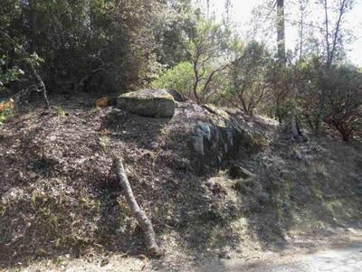0 RODWELL CANYON LOT 8 ROAD, SOMERSET, CA 95684 - Photo 2
