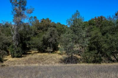 11240 BLUE GILL PL, Grass Valley, CA 95949 - Photo 1