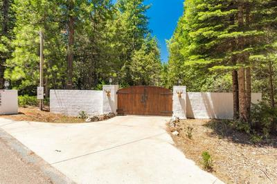 19485 DEERWOOD DR, Volcano, CA 95689 - Photo 2
