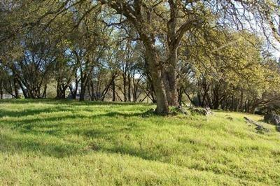 0 OTTER PLACE, Cool, CA 95614 - Photo 1