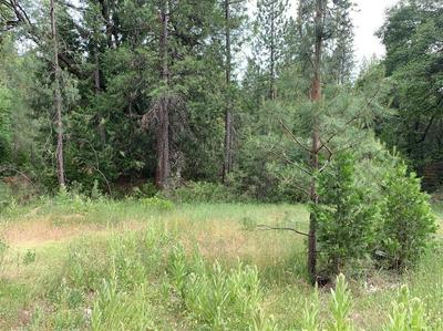 9432 GRIZZLY FLAT RD, Grizzly Flats, CA 95636 - Photo 1