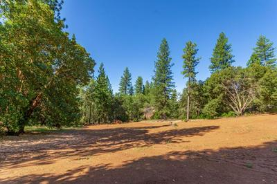 2801 DARR CT, Placerville, CA 95667 - Photo 2