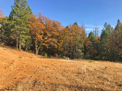 0 HOLLAND DRIVE, Placerville, CA 95667 - Photo 1