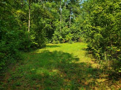 LOT 8 CHEROKEE TRAIL, Forsyth, GA 31029 - Photo 1