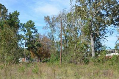 34 SCHOOL DR, Jeffersonville, GA 31044 - Photo 2