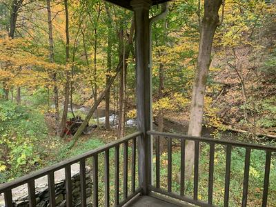 59 STANFORD RD, MILLBROOK, NY 12545 - Photo 2