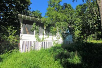 71 MILLER RD # 1, Beekman, NY 12533 - Photo 2