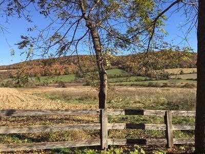 DEPOT HILL ROAD, Amenia, NY 12501 - Photo 2