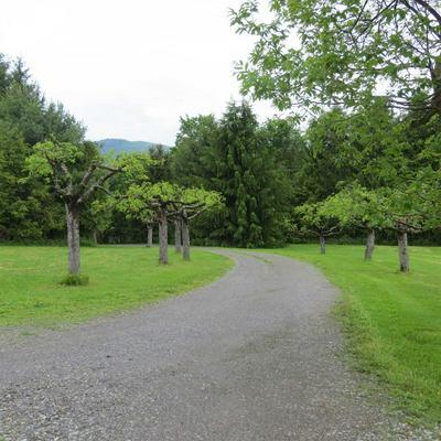 83 POPLAR HILL RD, Amenia, NY 12592 - Photo 2