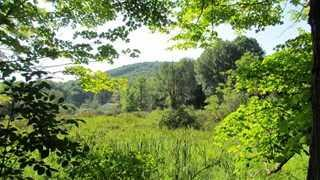 162 CONKLIN HILL RD, Stanford, NY 12581 - Photo 2