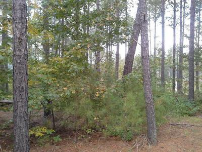 1031 LITTLE GREENBRIAR CRK, Greensboro, GA 30642 - Photo 2