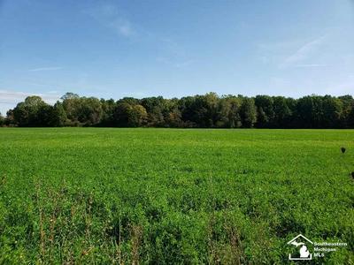0 N COUNTY LINE RD, Deerfield, MI 49238 - Photo 2