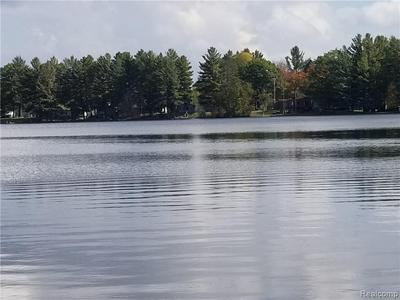 0 W LAKE DR, Sears, MI 49679 - Photo 2