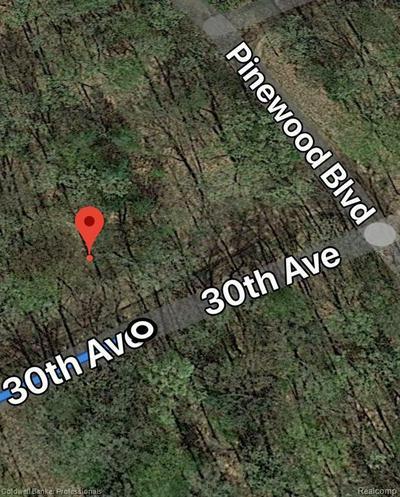 8909 30TH AVE, Bitely, MI 49309 - Photo 1