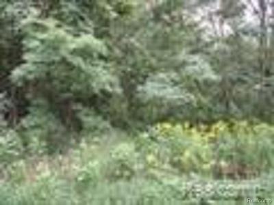 11880 ELY RD, Davisburg, MI 48350 - Photo 1