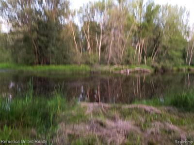 1062 CALCUT - PARCEL C, Lachine, MI 49753 - Photo 2