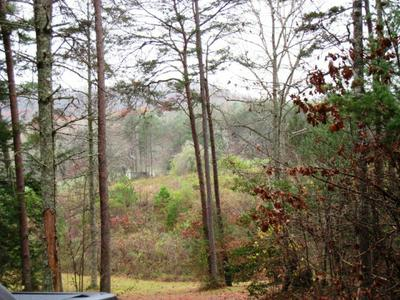 21.45AC LOWER BEAR PAW RD, MURPHY, NC 28906 - Photo 2