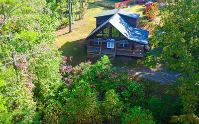 622 MISSION DAM RD, HAYESVILLE, NC 28904 - Photo 2