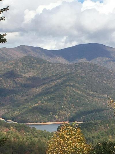 LT 30 LAKE VIEWS, ROBBINSVILLE, NC 28771 - Photo 1