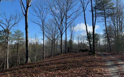 7 ACRES PAYNE ROAD, BRASSTOWN, NC 28902 - Photo 2