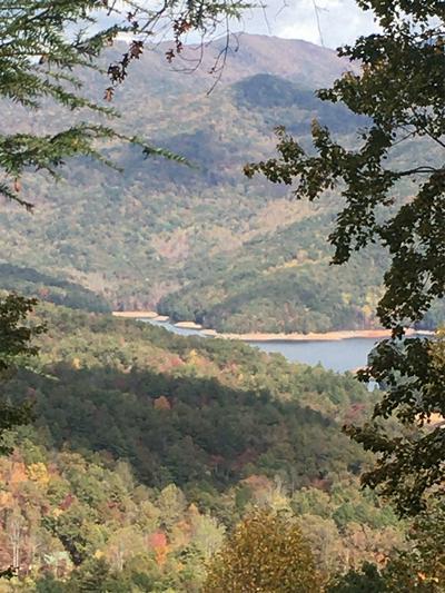 LT 30 LAKE VIEWS, ROBBINSVILLE, NC 28771 - Photo 2