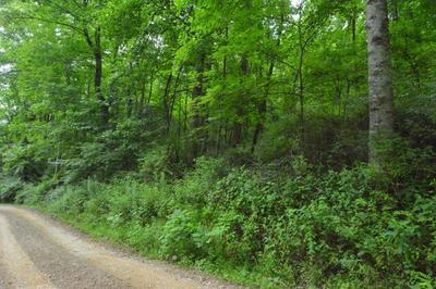 14 WALNUT BR # 17, Robbinsville, NC 28771 - Photo 1