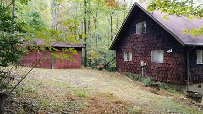 433 POSSUM HOLLER TRL, BRASSTOWN, NC 28902 - Photo 2
