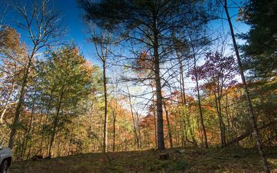LOT 5 WHITE OAK FOREST, Hiawassee, GA 30546 - Photo 2