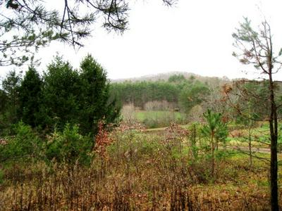21.45AC LOWER BEAR PAW RD, MURPHY, NC 28906 - Photo 1