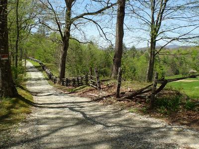LOT #8 DEWEESE ROAD, Topton, NC 28781 - Photo 2