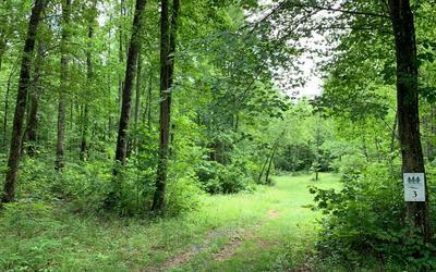 3 WHISPERWOOD RD, Hiawassee, GA 30546 - Photo 1