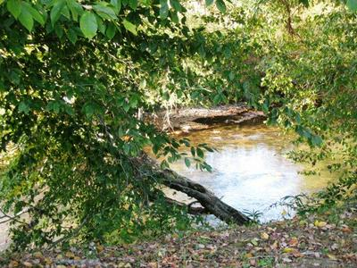 5 LOTS LEAPING TROUT RUN, Marble, NC 28905 - Photo 2