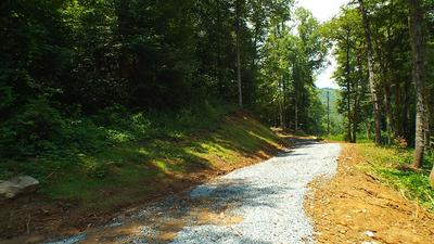 TBD WEST BUFFALO ROAD, ROBBINSVILLE, NC 28771 - Photo 2