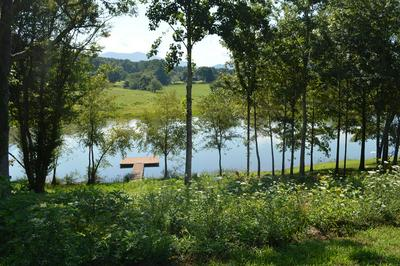 LOT 25 MEADOWS AT CHATUGE, HAYESVILLE, NC 28904 - Photo 1