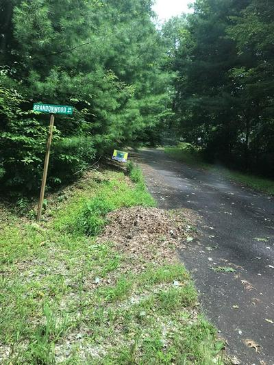 7 GRASSY BRANCH RD, TOPTON, NC 28781 - Photo 2