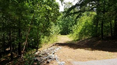 49 CHOCTAW RIDGE TRAIL, Murphy, NC 28906 - Photo 2