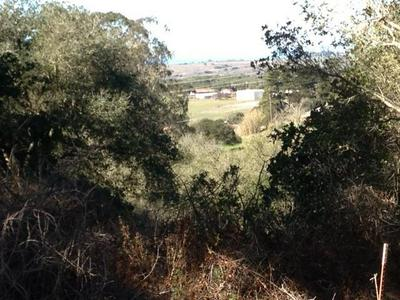 39 BAYVIEW RD, CASTROVILLE, CA 95012 - Photo 2