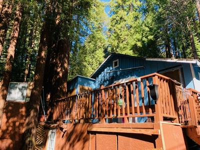 101 ANNIES WAY, Brookdale, CA 95007 - Photo 1