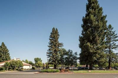 529 E PERKINS ST, UKIAH, CA 95482 - Photo 2