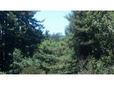 0 RODEO GULCH, Soquel, CA 95073 - Photo 2