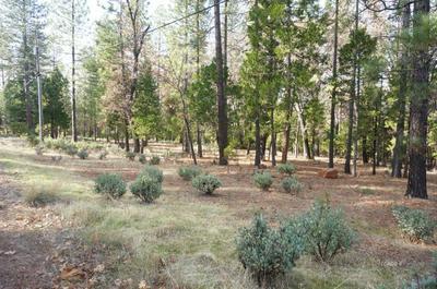 30607 WHITMORE RD, WHITMORE, CA 96096 - Photo 2