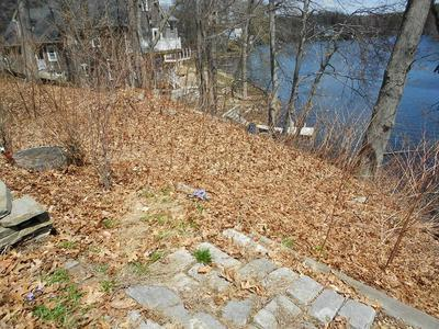 56 LAKESIDE DR # 0, SHREWSBURY, MA 01545 - Photo 2