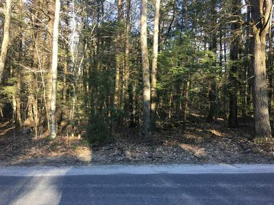 0 BISSELL RD, Chesterfield, MA 01012 - Photo 2