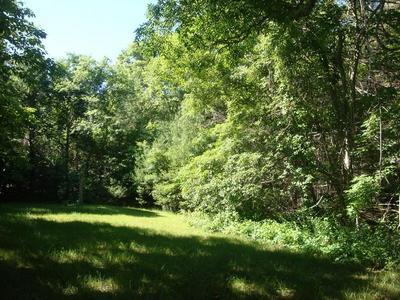 384 WAREHAM ST, Middleboro, MA 02346 - Photo 2